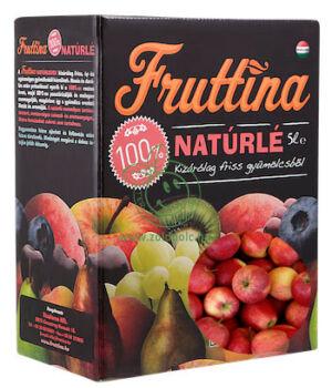 Gyümölcslé, Fruttina (alma,5l)