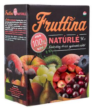 Gyümölcslé, Fruttina (alma-meggy,5l)