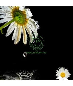 Virágvíz (kamilla,100ml)