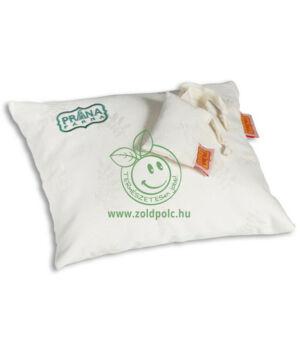 Tönköly párna, alvó (25x30cm,biopamut)