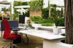 zöld munkakörnyezet