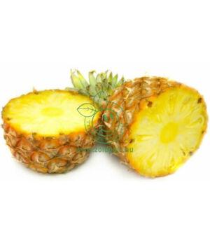 Szárított ananász por 10g