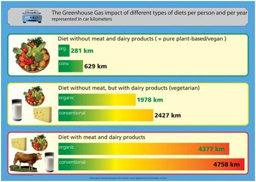 Táplálkozási módok környezetre gyakorolt hatása